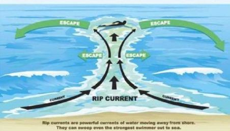 Rip Curs Are The Cause Of Over 90 Our Swimmer Rescues Each Year These Normally Small Channels Water Flowing Seaward Which Will Pull